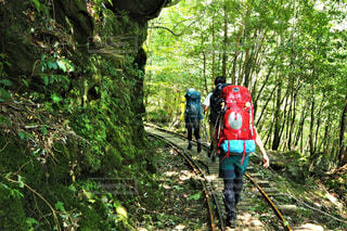 夏山登山の写真・画像素材[2551946]