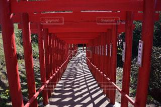 元の隅稲荷神社の写真・画像素材[277549]