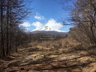 浅間山の写真・画像素材[2582228]