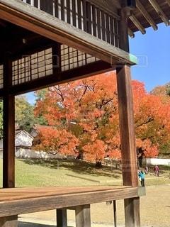 建物の前に座っている木製のベンチの写真・画像素材[2725646]