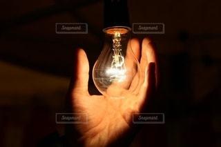 電球に触れる手の写真・画像素材[2557733]