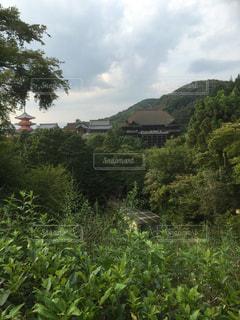 No.516494 清水寺