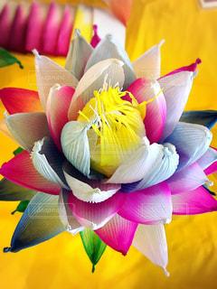 カラフルな花でいっぱいのバスケットの写真・画像素材[2554215]