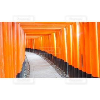 京都の写真・画像素材[2570445]