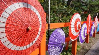 傘の写真・画像素材[2574220]
