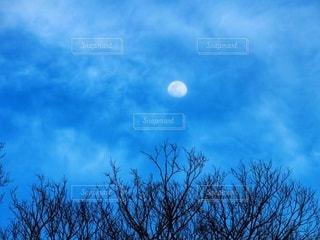 青空の残る夕暮れの空に浮かぶ月の写真・画像素材[2639487]