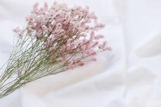 白いシーツにピンクのドライフラワーの写真・画像素材[2704046]