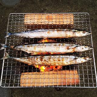 美味しい秋の秋刀魚を七輪焼きでどうぞの写真・画像素材[2563310]