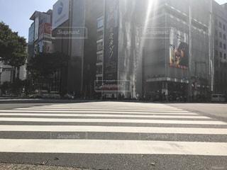 道路の写真・画像素材[239973]