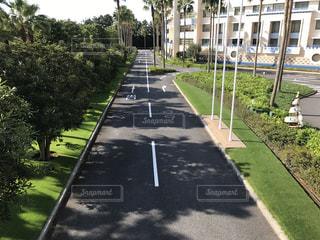 駐車場の写真・画像素材[252587]