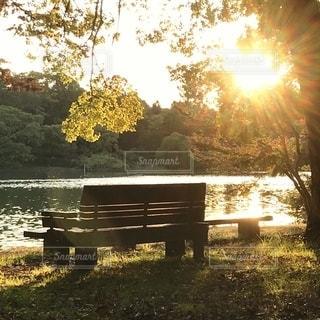 水域の隣にある公園のベンチの写真・画像素材[2713538]