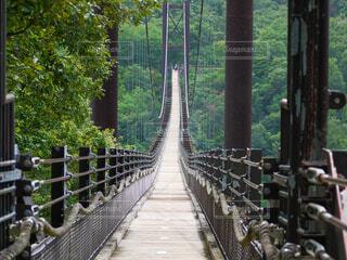 木の塀を越える橋の写真・画像素材[3674624]