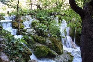 自然の写真・画像素材[107039]
