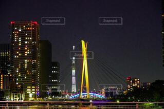 橋とスカイツリーとビルの夜景の写真・画像素材[4939395]