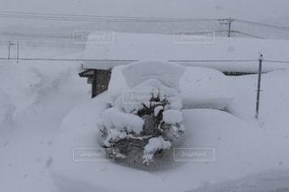 雪国の写真・画像素材[2651696]