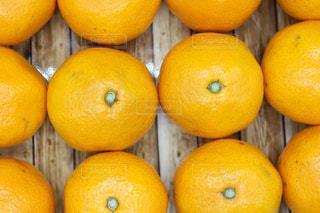 テーブルの上のオレンジのグループの写真・画像素材[2849613]