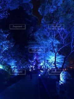夜の写真・画像素材[2635535]