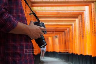 カメラと鳥居📸の写真・画像素材[2606623]