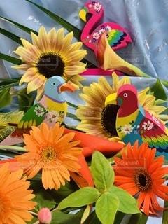 鳥の楽園の写真・画像素材[3409980]