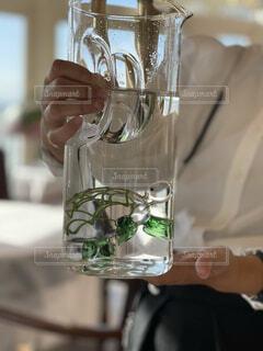 ガラスの亀の写真・画像素材[3943899]