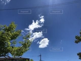 見とれた空の写真・画像素材[2585941]