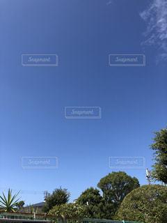 雲ひとつない秋の空の写真・画像素材[2585950]