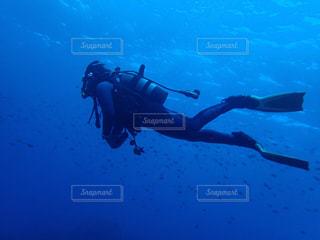 泳ぐの写真・画像素材[2586173]