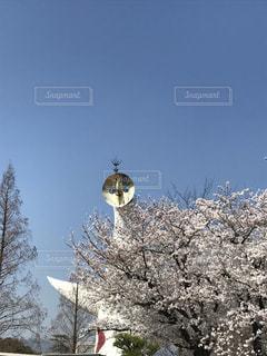 空の写真・画像素材[2590136]
