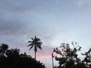 空の写真・画像素材[100432]