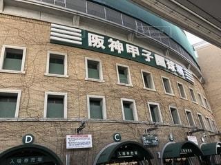 阪神甲子園球場の写真・画像素材[1329248]