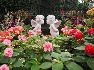 天使とバラの写真・画像素材[2592205]