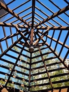 くもの巣での空の写真・画像素材[2595500]