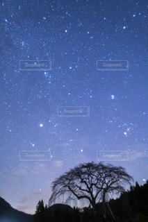 冬の星座の写真・画像素材[2779470]