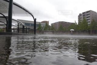 雨の写真・画像素材[2604481]