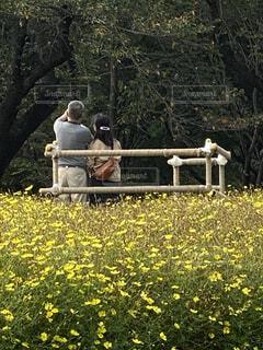 公園のベンチに座っている人々のグループの写真・画像素材[3793052]