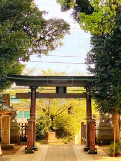 建物の隣にある空の公園のベンチの写真・画像素材[4321770]