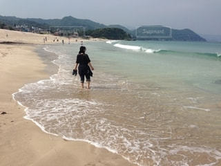 伊豆急下田 白浜海岸の写真・画像素材[2608367]
