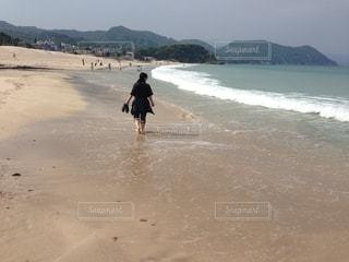 伊豆急下田 白浜海岸の写真・画像素材[2608368]
