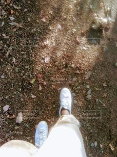 始めの一歩の写真・画像素材[2670812]