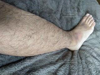 右足の毛の写真・画像素材[2712517]
