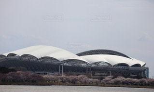 サッカー場と桜並木の写真・画像素材[3085093]
