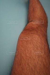 毛深い右足のクローズアップの写真・画像素材[4067411]