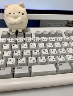 パソコンのキーボードと…の写真・画像素材[2879587]