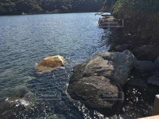 水域の隣の岩の上に座っている人の写真・画像素材[2692939]