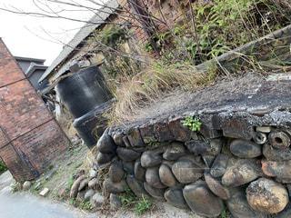 岩のクローズアップの写真・画像素材[2846712]