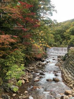 紅葉と滝の写真・画像素材[2602147]