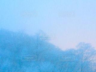 霧の写真・画像素材[101007]