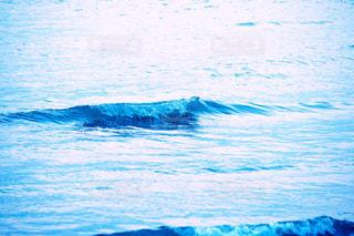 ビーチの写真・画像素材[132317]