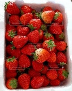 箱いっぱいの苺の写真・画像素材[2994880]