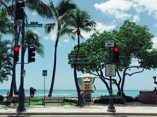 ハワイの写真・画像素材[2610038]